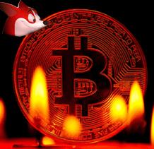 red dog + bitcoin bondsjackpot.com